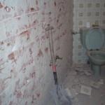 Picar alicatado baño